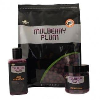 mulberry plum
