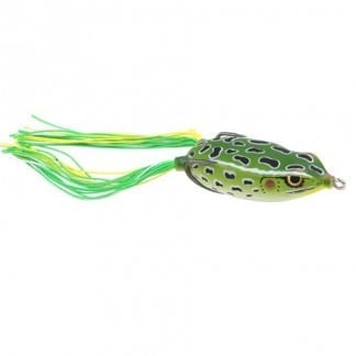 Dean Rojas Bronzeye Frog 65