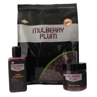 mulberry plum